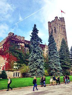 My lovely campus, Western university, London, Ontario.