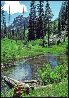 Sawtooth Wilderness Area - Alice Creek To Alice Lake, Idaho