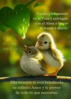 Conceptos del Verdadero Precio de la Felicidad - IMAGENES GRATIS Pretty Quotes, Love Life Quotes, Psalm 143 8, Good Day Wishes, Show Me The Way, Spiritual Messages, Inspirational Phrases, Critical Thinking Skills, Everything Is Possible