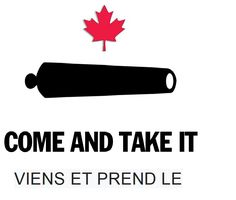 -For my Canadian friends. Wayne Lapierre, District 13, Come And Take It, Assault Weapon, Early Voting, Voter Registration, Gun Rights, Election Day, Gun Control