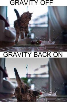 Gravity on  off