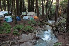 Camping in Limekiln State Park along Limekiln Creek in Redwood Campsites and Ocean Campsites provides a great Big Sur, California camping experience I THINK THIS IS WHERE WE ARE HEADING NEXT SUMMER