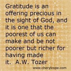 Thanksgiving Quotes and Scriptures; Bible verses on gratitude and thanksgiving ; pinnable quotes on thanksgiving and gratitude Thanksgiving Blessings, Thanksgiving Quotes, Thanksgiving Greetings, Thanksgiving Appetizers, Thanksgiving Outfit, Thanksgiving Crafts, Thanksgiving Decorations, Attitude Of Gratitude, Gratitude Quotes