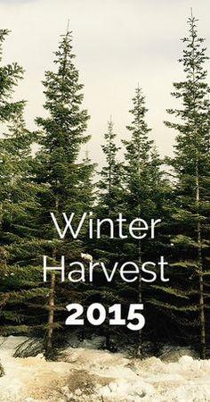 Winter Harvest 2015