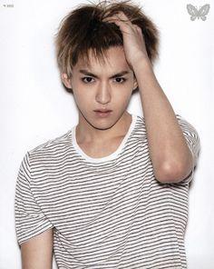 Exo | Exo-m | - Kris KrisWu Wufan WuYifan