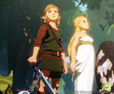 Zelda Breath Of Wild, Legend Of Zelda Breath, Breath Of The Wild, Legend Of Zelda Memes, Zelda Twilight Princess, Hyrule Warriors, Wild Wolf, Link Zelda, Female Characters