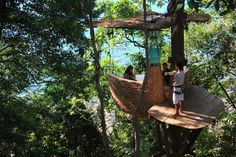 Bird's Nest Restaurant with Flying Waiters the Soneva Kiri resort in Thailand.It gives you a fantastic dinner or breakfast in your life.The servants are flying to serve I think.For more visit our facebook page.