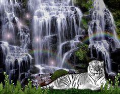 water fall in art | White Tiger Waterfalls