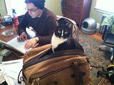 Simon in my Filson bag