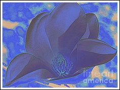 Blue #Magnolia #Pop Art by Dora Sofia Caputo