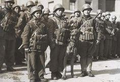 Il Barbarigo fu un reparto di fanteria di marina della Xª Flottiglia MAS, costituito a La Spezia nel novembre 1943