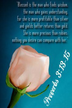 """""""Blessed is the man who finds wisdom, the man who gains understanding, for she is more profitable than silver and yeilds better returns than gold. She is more precious than rubies; nothing you desire can compare with her"""". (Proverbs 3:13-15)."""