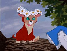 8 Zen Disney GIFs to Bring Inner Peace | Oh My Disney | Awww