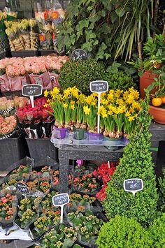 Rue Cler Flower Market in Paris