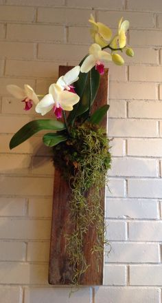 Orchid mounted on reclaimed pallet board