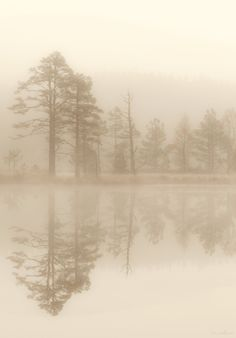 Love the #foggy, #warm look to this shot. The #reflections are beautiful as well. Sometimes great #photography isn't about vibrant colors and contrast; it's about the lack of both.