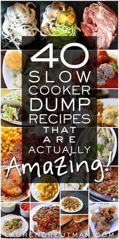 40 Slow Cooker Dump recipes that are actually fantastic! Organized by type of meat!