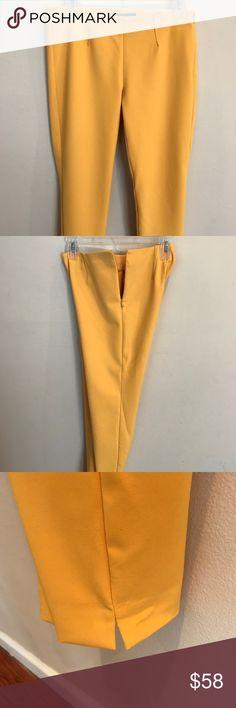 Theory woman's Gold Dress Pants Theory gold straight leg dress pants size 4 Theory Pants Straight Leg