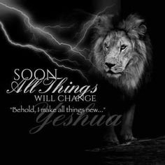 Lion from the Tribe of Judah Lion Of Judah Jesus, Judah And The Lion, Scripture Verses, Bible Verses Quotes, Bible Scriptures, Prayer Verses, Biblical Quotes, Religious Quotes, Lion Quotes