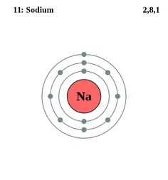 Atom Diagrams: Sodium Atom