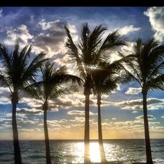 Morning sunlight, Ft Lauderdale Beach.
