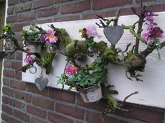 For Christmas with evergreens and. Deco Floral, Arte Floral, Floral Wall, Floral Design, Pretty Flowers, Fresh Flowers, Spring Flowers, Plantation, Plant Decor
