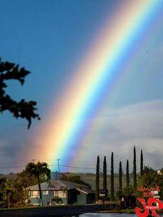 Rainbow , Maui