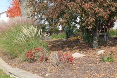 Landscaping between the 2 church buildings.