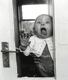 [hahahahahahaha! perfect.] meet shelby :)