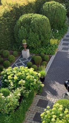 Garden Front Of House, Front Garden Landscape, House Landscape, Home And Garden, Small Courtyard Gardens, Back Gardens, Outdoor Gardens, Topiary Garden, Hydrangea Garden