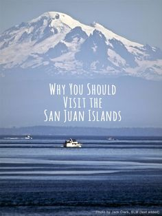 Why You Should Visit the San Juan Islands