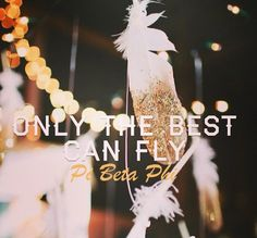Pi Beta Phi- only the BEST can fly #piphi #pibetaphi