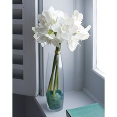 Add a touch of green to your space with silk flowers and artificial plants from Crate and Barrel. Browse life-like flowers, branches, succulents and more.