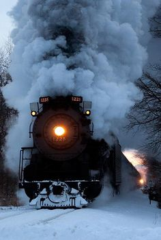 Smoke & Steam ~ Classic Look ~ Pere Marquette 2-8-4 Berkshire No.1225 ~ BFD