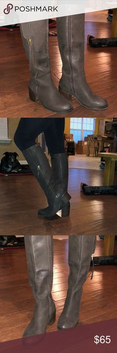"""Steve Madden Brand New knee high boots Leather upper, rust color, knee high boots, never been worn, I bought them from a friend and they were too small and I never returned them.  These are the cutest boots ever and I'm so sad they don't fit. 2.75"""" heel, side zipper, outside decorative zipper. Super stylish, and cute. These were VERY expensive and double the price.  SIZE 8. Reduced to $65 Steve Madden Shoes Heeled Boots"""