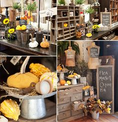 nice shop displays - like the idea of using old dressers and pulling out the drawers to display items. Could the drawers be converted into hydro system or cooler?