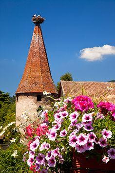 #Alsace #France  Le Parc**** Hôtel, Restaurants  Spa Alsace Obernai   Tél 03 88 95 50 08    www.hotel-du-parc.com/  www.facebook.com/leparcobernai