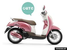 Collection of the Motor Honda Scoopy Modification | Previous set of Top Info
