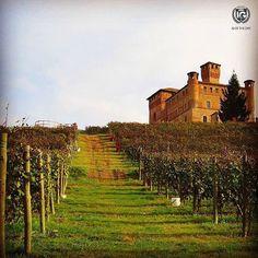 presents  I G  O F  T H E  D A Y  P H O T O | @ale_emiefra L O C A T I O N | Grinzane Cavour the Castle in Vineyards F R O M | @ig_cuneo_ A D M I N | @berenguez M O D E R A T O R | @sarasbre S E L E C T E D | our team F E A T U R E D  T A G | #ig_cuneo_ #ig_cuneo #cuneo M A I L | igworldclub@gmail.com S O C I A L | Facebook   Twitter  L O C A L  S O C I A L | http://ift.tt/1Ho2hK1 | http://ift.tt/1Qng2g6 M E M B E R S | @igworldclub_officialaccount F O L L O W | @igworldclub @ig_europa…