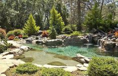 Natural pond design swimming pool with water features Natural Swimming Ponds, Natural Pond, Swimming Pools, Swimming Pool Designs, Natural Garden, Pond Design, Modern Garden Design, Dream Pools, Beautiful Pools