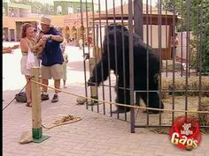 gorilla prank