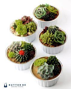 #다육이 #선인장 #succulent #cactus #flowercake #flower #buttercream #buttercreamcake #cupcake #cakedesign #buttercake #플라워케이크 #꽃케이크 #버터크림케이크 #컵케이크 #답례품 #이벤트 #korea #koreanflowercake #cakedecorating #ケーキ #バタークリーム #お花絞り #蛋糕 #奶油蛋糕 #甜点