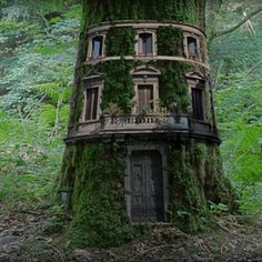 Woodland mansion - Fantasy image created from a tree in the Lake District, windows from a circular building in Rome, the door of Duomo, Florence and a refuse bin. by Gary Dixon Cool Tree Houses, Fairy Houses, Garden Houses, Beautiful Tree Houses, Garden Buildings, Dream Houses, In The Tree, Big Tree, Lake District