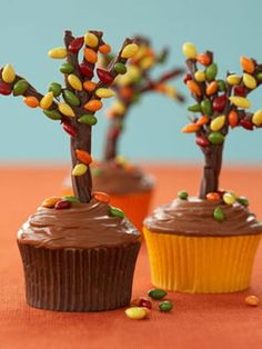 """Make tree for cupcake with chocolate licorice cut to 3"""", sliced to make thin branches, piped with melted chocolate chips, and sprinkled with candied sunflower seeds. Wait until set and stick into cupcake. Cute!"""