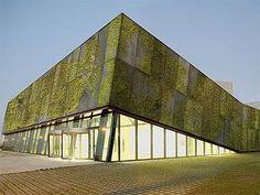 Galeria - Concreto biológico para muros verdes - 1