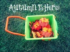 Autumn Outdoor Fun! #kids #activity #gummylump #Fall