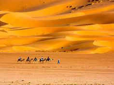 Morocco: Escape to the sand swept Sahara Desert. Explore everything from deserts to mountains, there is so much to be seen!