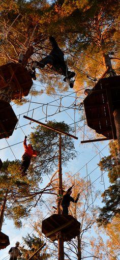 Seikkailujen kesä päättyi näyttävään auringonlaskuun, joka kultasi latvukset ja seikkailijat. #seikkailupuisto #treetopadventure #espoo #finland