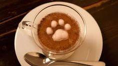 ¿Conoces el art latte? Seguro que has visto en las redes sociales estas dibujas que se realizan sobre el café con leche. Aquí te presentamos los dibujos más alucinantes y también su nueva tendencia de avolatte: café con leche en un aguacate. Para más tendencias como esta, no te olvides visitar nuestra página web (tendenzias.com)