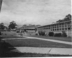 Vermont High School 1967, via http://www.johndownunder.nl/info/pics/schoolphotos/